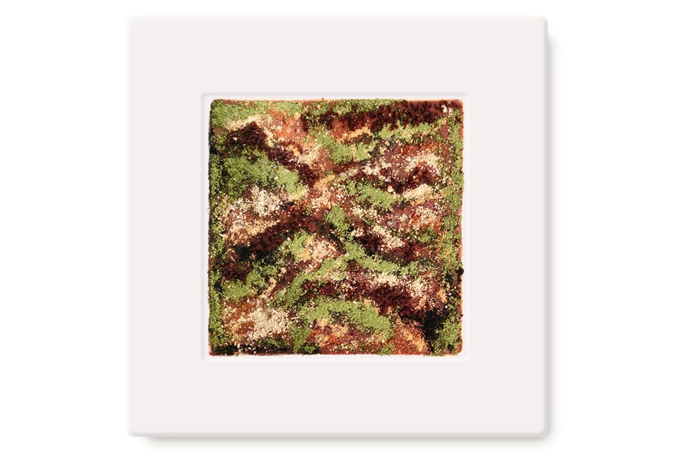 Massimo Bottura - Camouflage